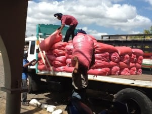After visiting the cooperative we drive toward Managua to visit the Soprexxa coffee beneficio. Here coffee from farms across Nicaragua big and small are delivered and unloaded for production. Men throw the huge sacks of beans (150 lbs) on to a huge pile.